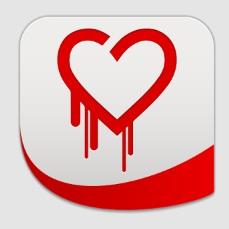 heartbleed detector